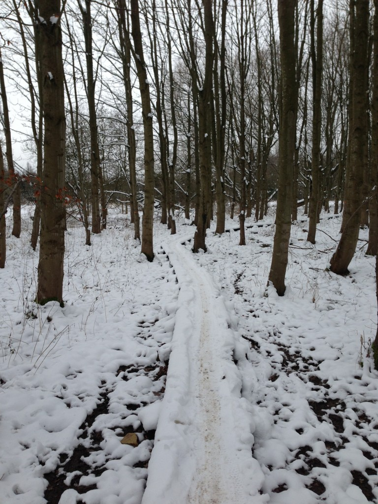 Swindon trail in the snow
