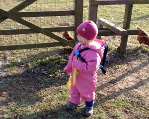Matilda in pink suit feeding chickens