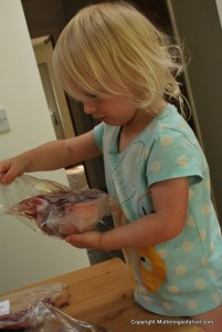 Matilda inspecting the meat delivery