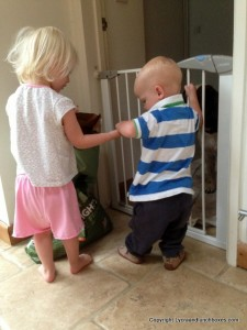 Matilda and Henry feeding Bracken