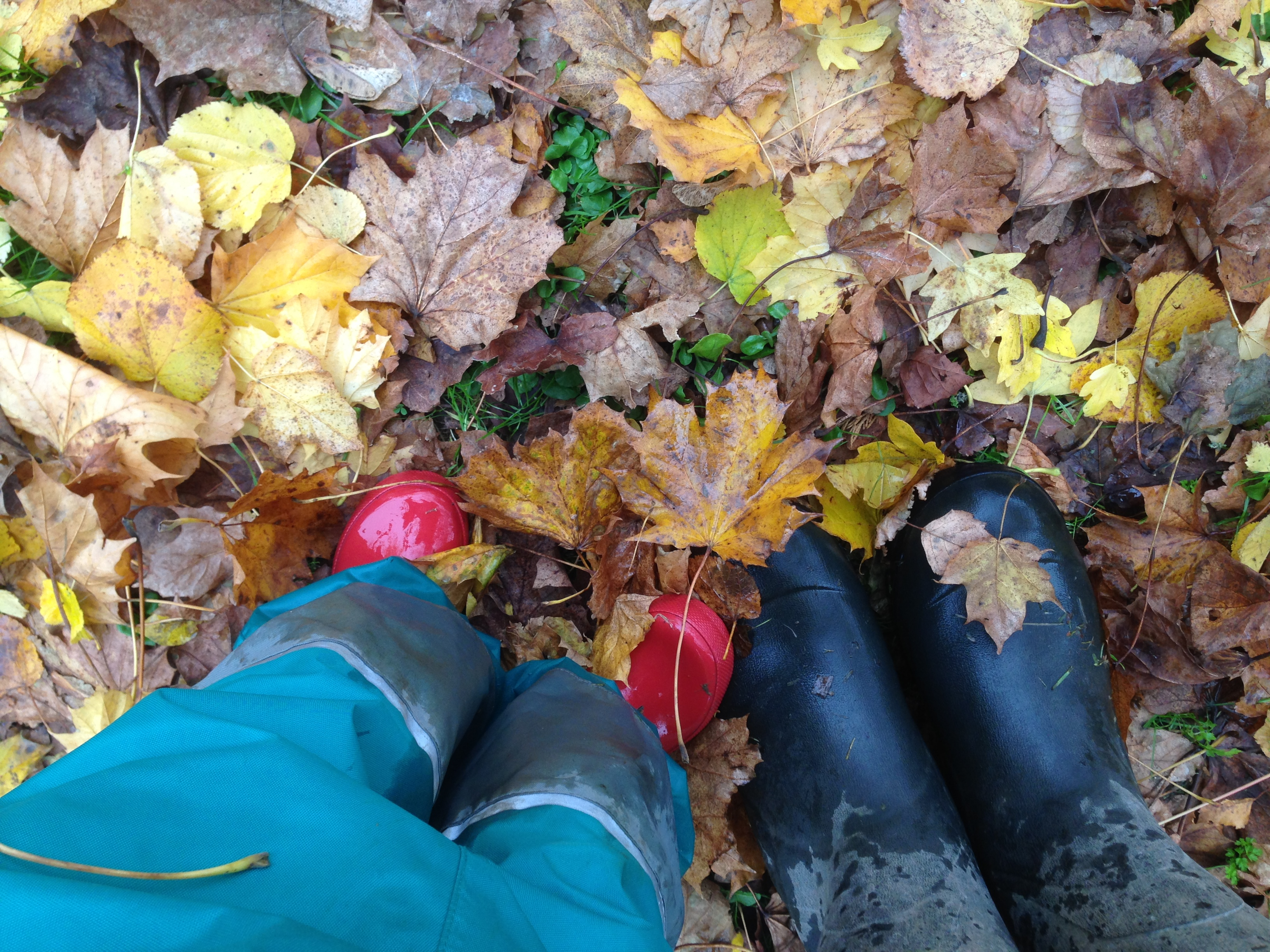 Wellies in leaves