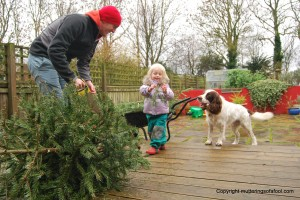 Chopping up the Christmas tree