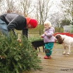Toddler Christmas withdrawal symptoms