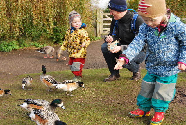 Matilda and Henry feeding ducks