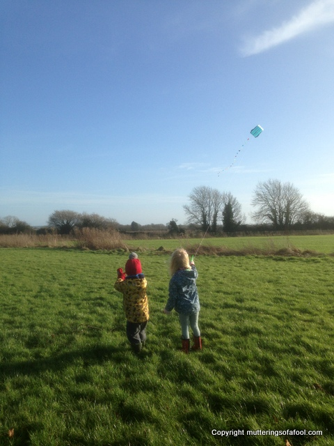 Henry and Matilda kite flying