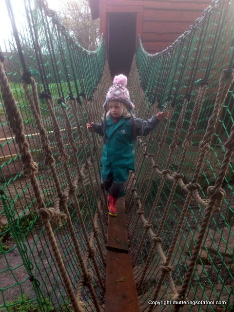 Matilda on rope bridge