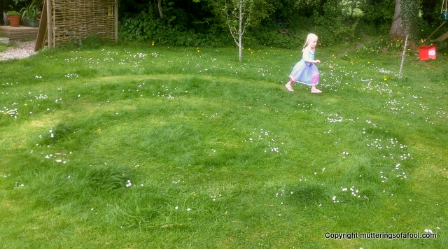 Matilda running around grass circle